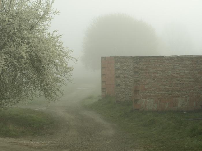 Ködös