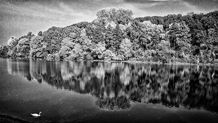 tiszadobi ősz a holt-Tiszán