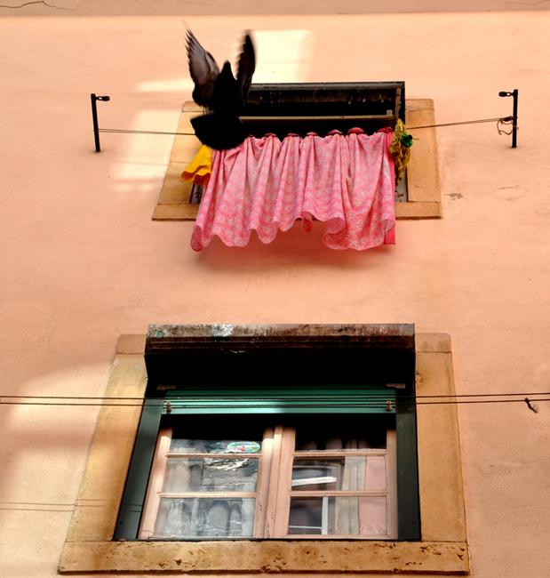Hegyi Zsolt-2012.03.14. 10:46