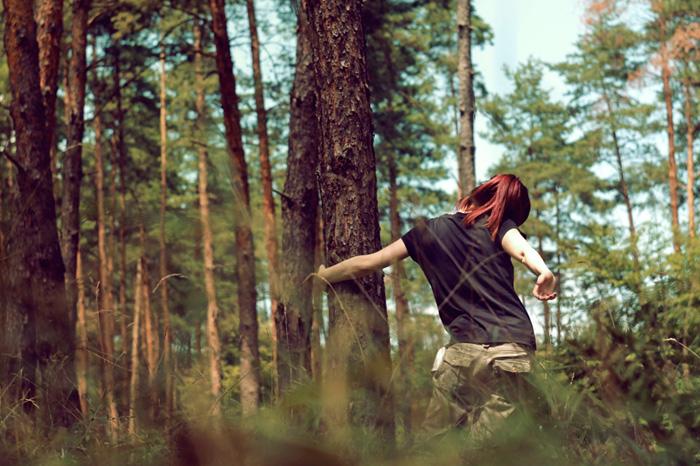 Hív az erdő