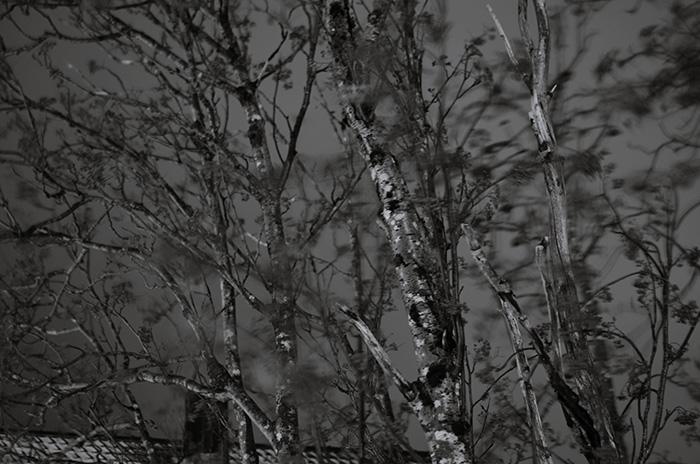 Hegyi Zsolt-2012.12.18. 18:35