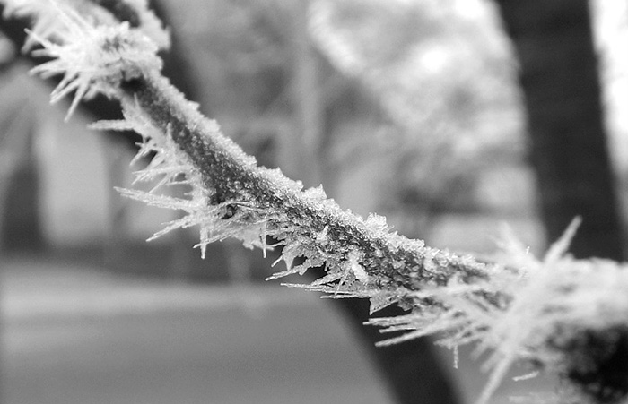 Hideg van