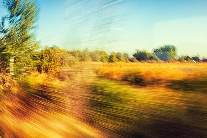 Utazás az őszbe