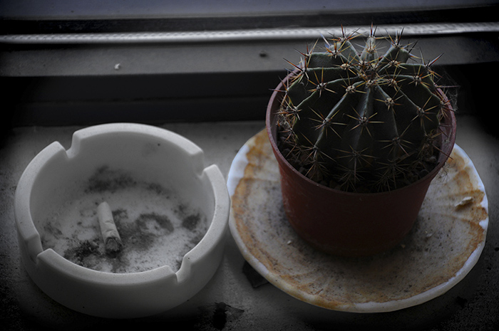 Kaktusz és cigaretta
