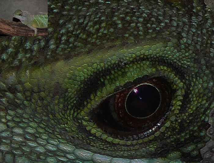 A sárkány szeme