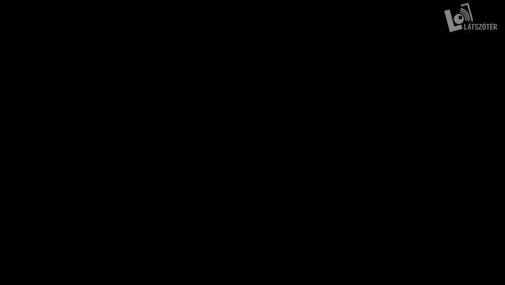 Hegyi Zsolt-2014.02.06. 17:27