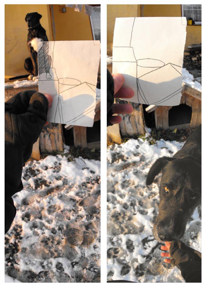 kutyaházőrző