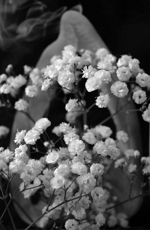 Kisvirágos
