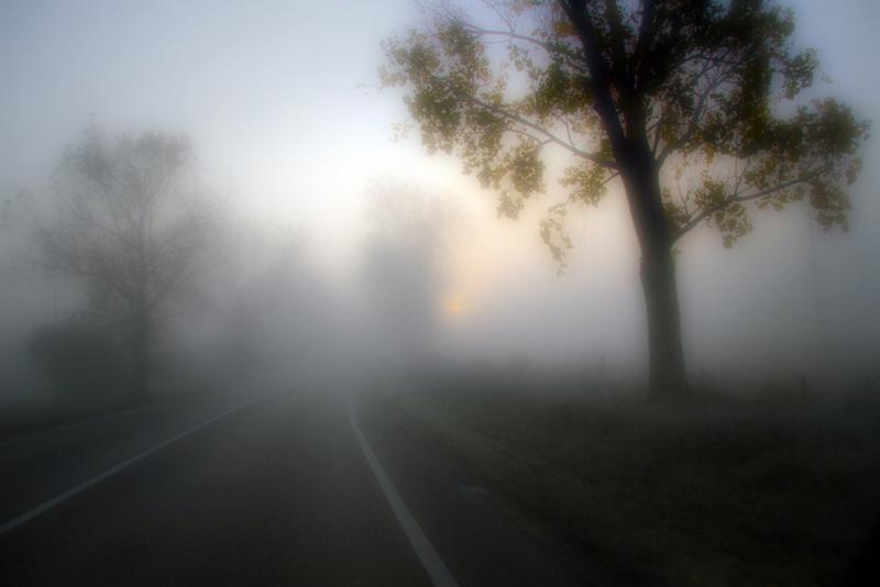 Hajnali utazás