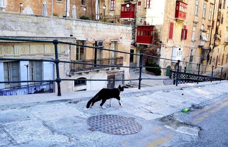 Vallettai utcán
