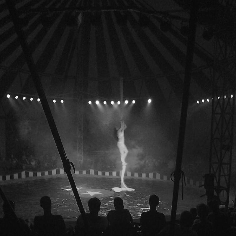 365/67 -- Cirkusz