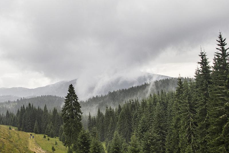 Felhő, köd, pára