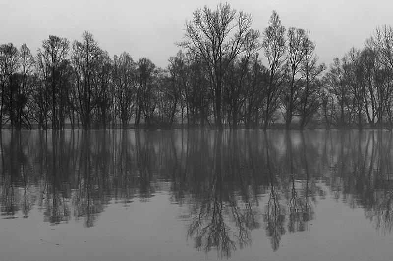 Tavaszi áradás az Ipolynál - Ipolybalognál