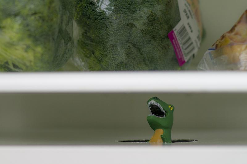 P366/355 - mese a hűtőből