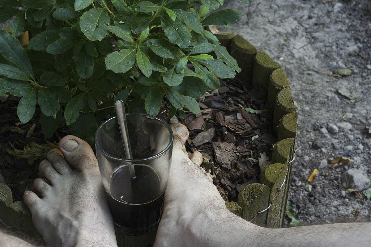 365/12. Reggeli kávézás...