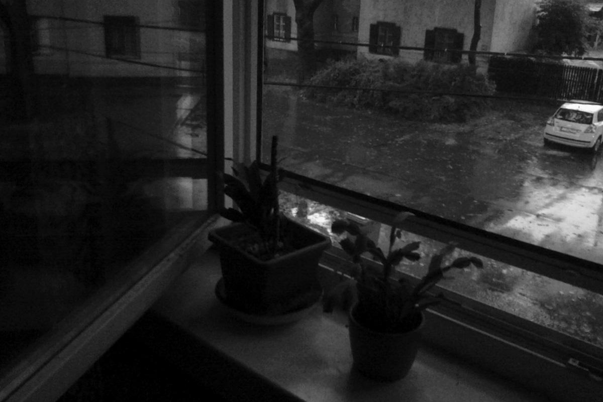 365/14. Esős reggel