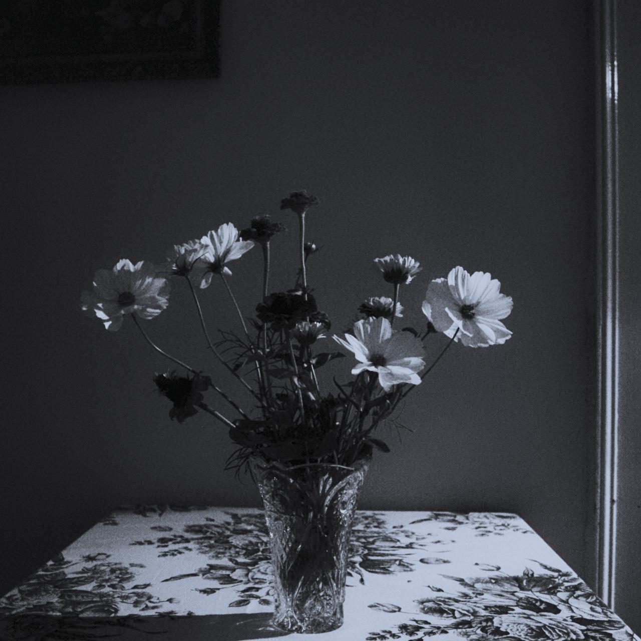 Virágok, vázában