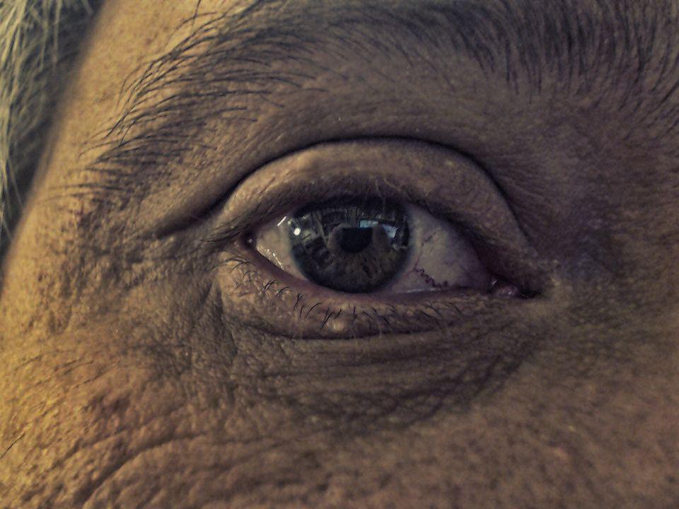 102/365 Öreg szem