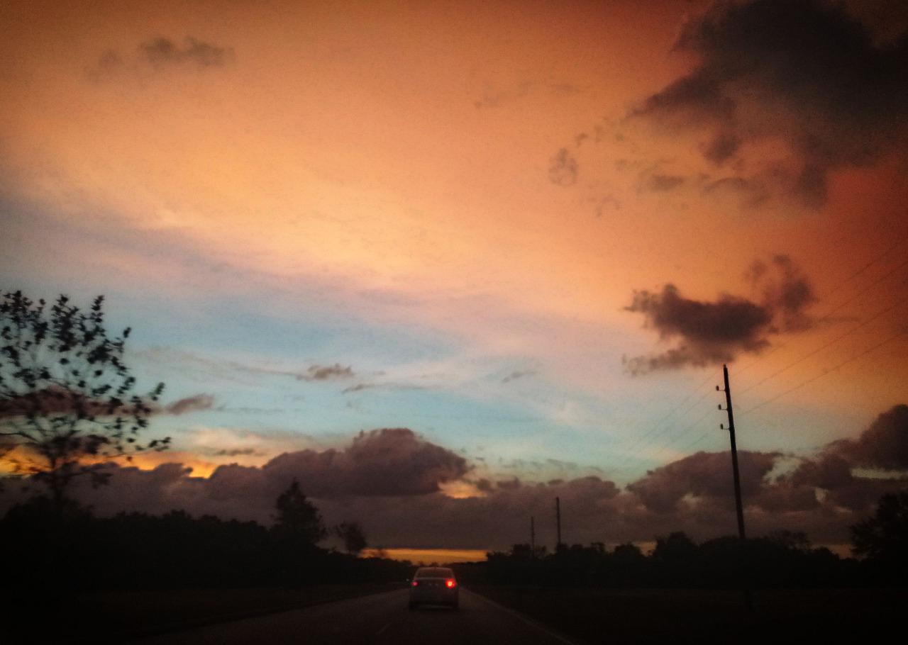 147/365 S hogy a rózsásujjú Hajnal kélt ki a ködből...