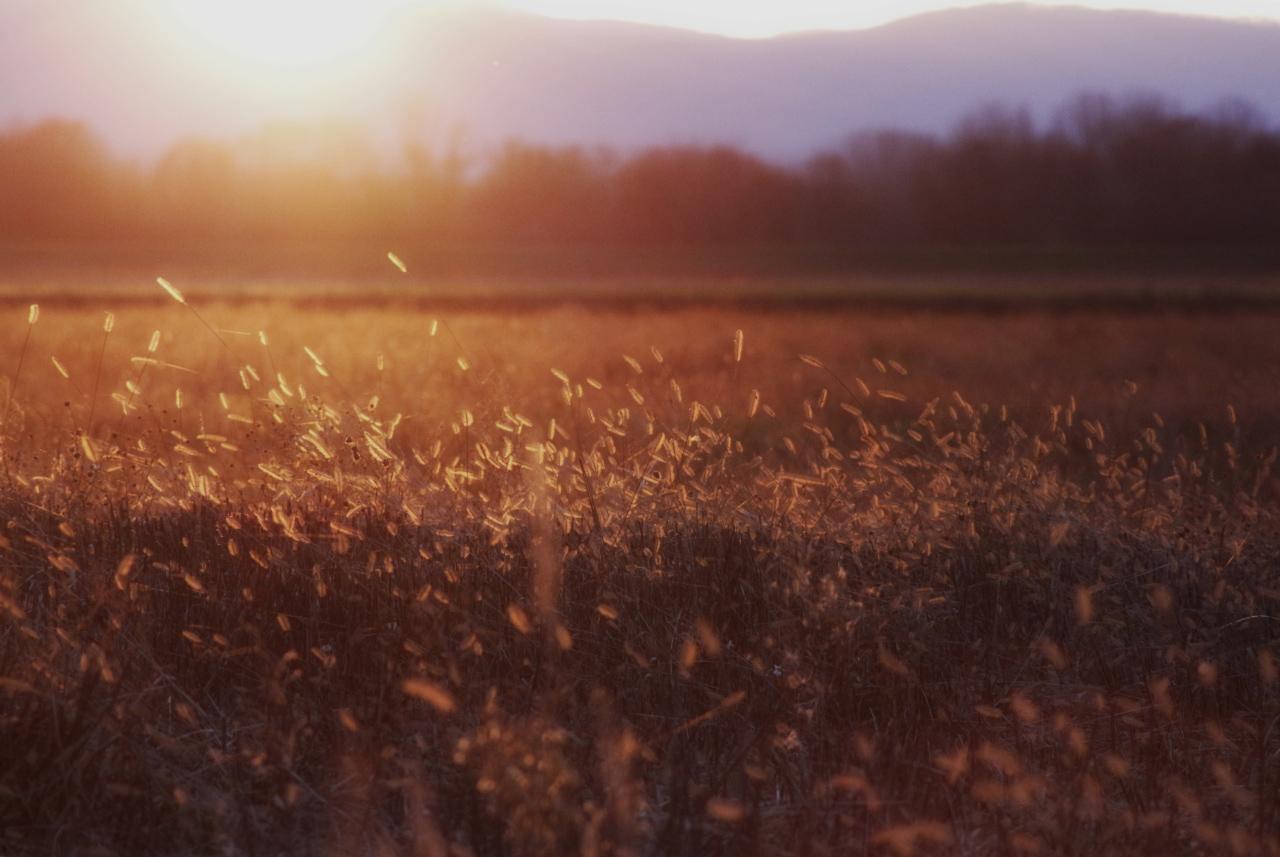 Pót-naplemente