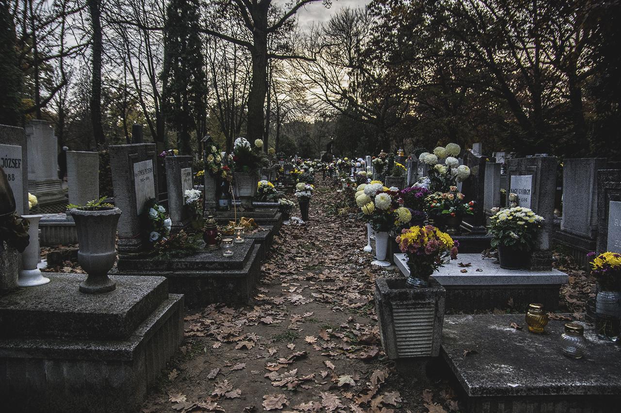 123/365 Halottak Napja