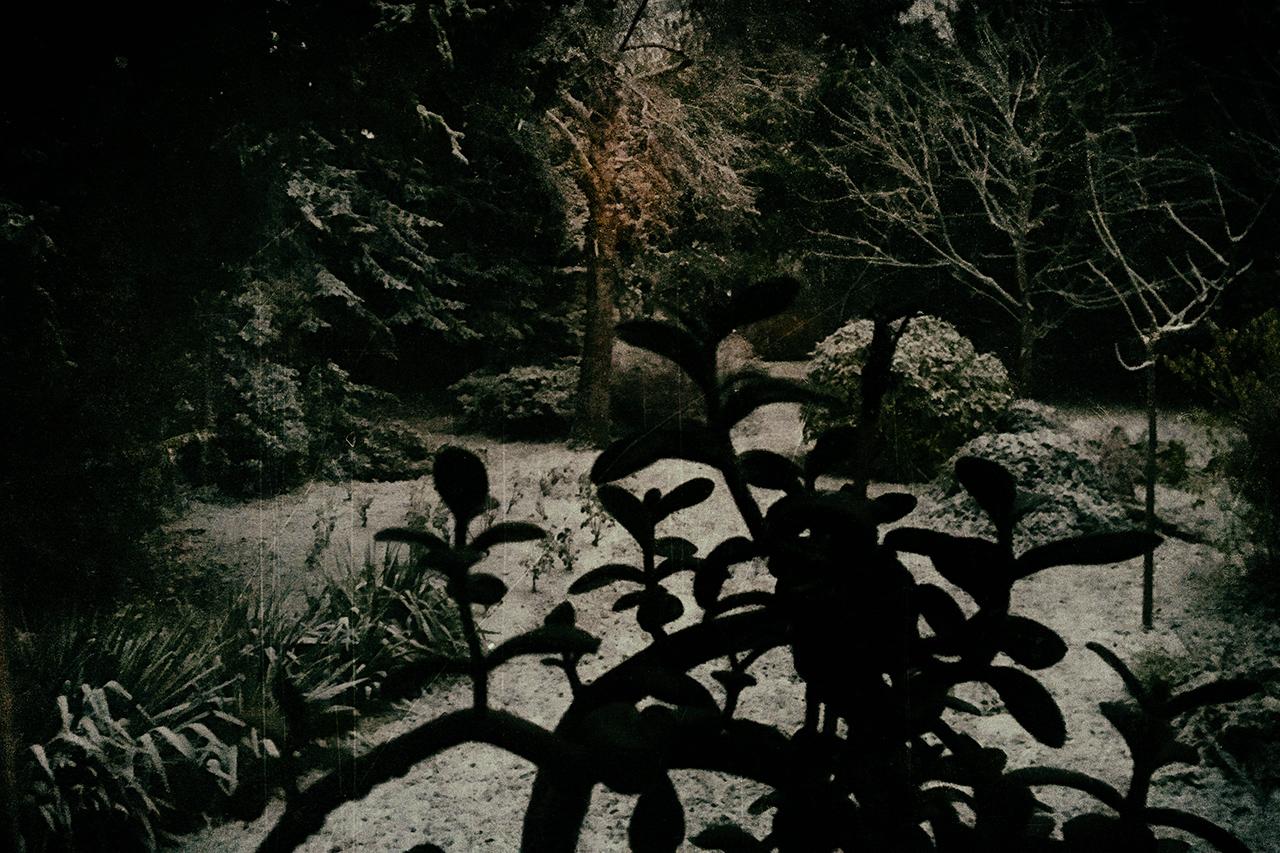 365/161 - Első hó
