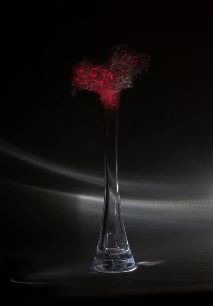 Művirágok - XXI. sz