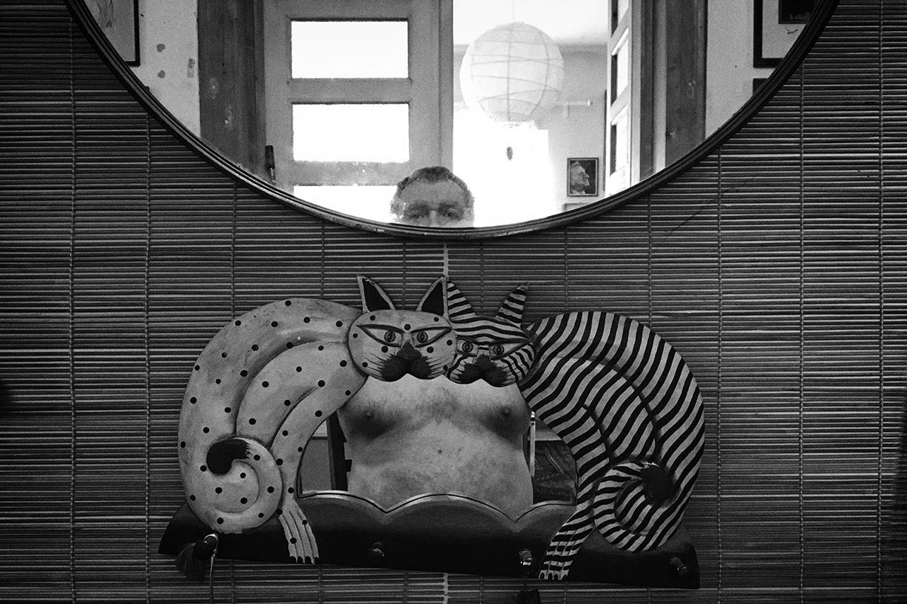 365/288 - Tükörkép macskákkal
