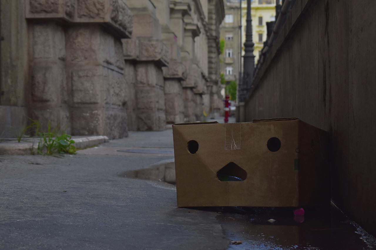 A doboz arca