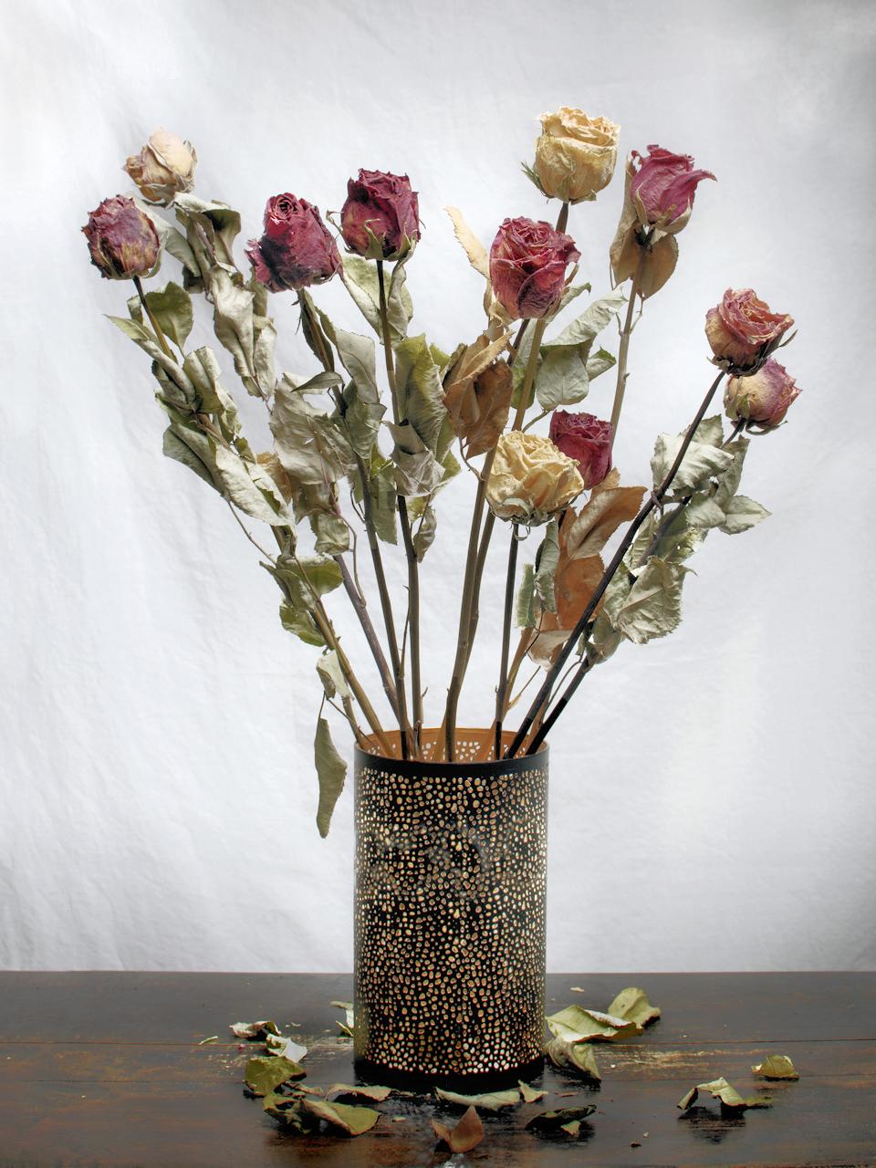 Száraz rózsák
