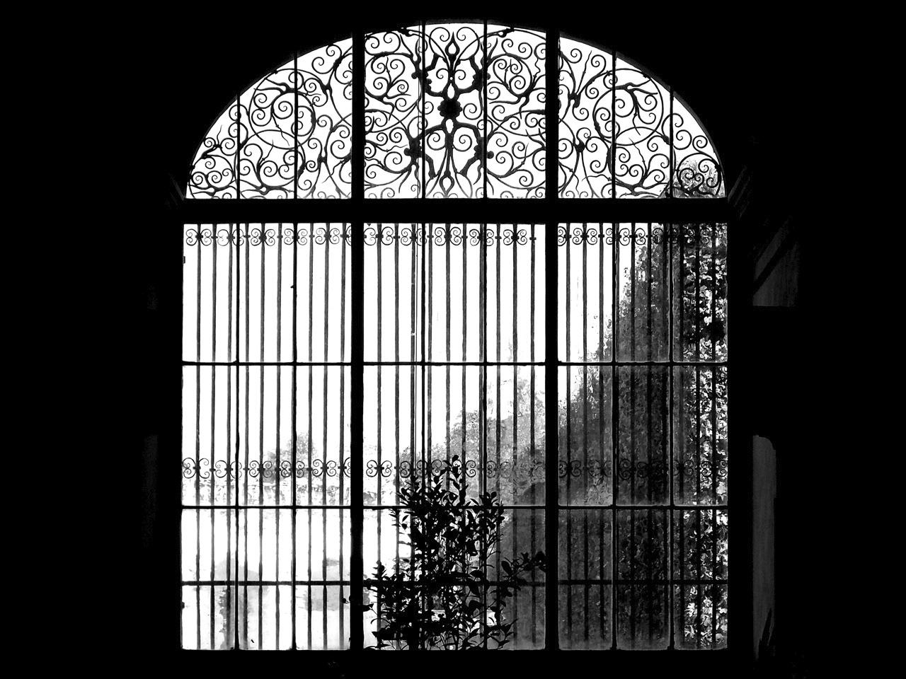 Ablak a kertre