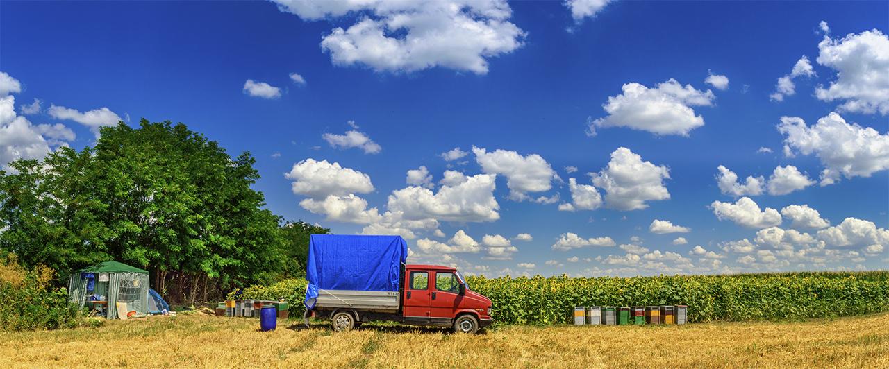 Így nyaral a méhész
