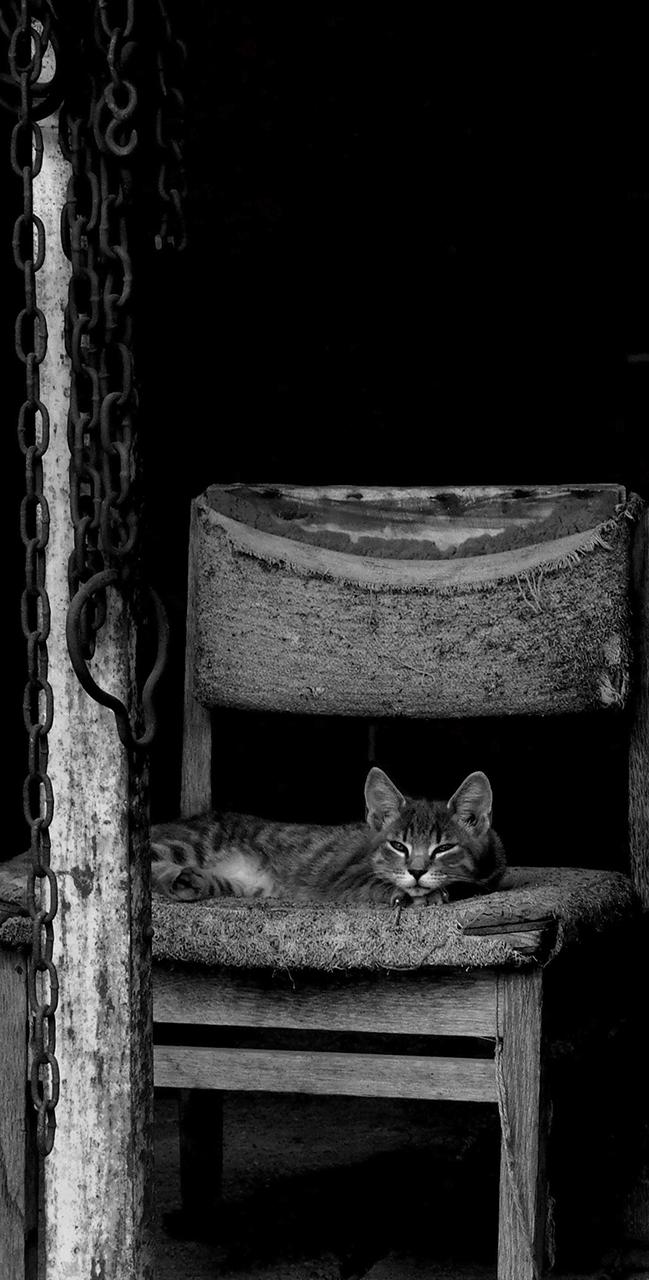 Az álmosság határán