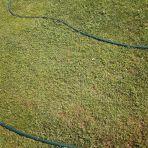 Putto 365/76 - kígyókkal fűben