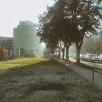 Putto 365/155 - csillogós reggel