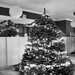 Karácsonyfa - könyvekből (183.365)