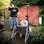 365/309 - A felszabadult kertész
