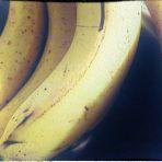 46/365 Banán Éj (Freudi álom)
