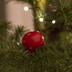 376_177_karácsonyi_paradicsom