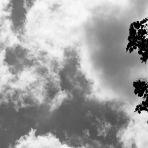 316/365 Pécs felett az ég